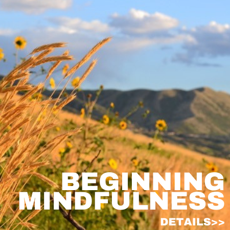 Beginning Mindfulness 1.5 in. x 1.5 in. (3)