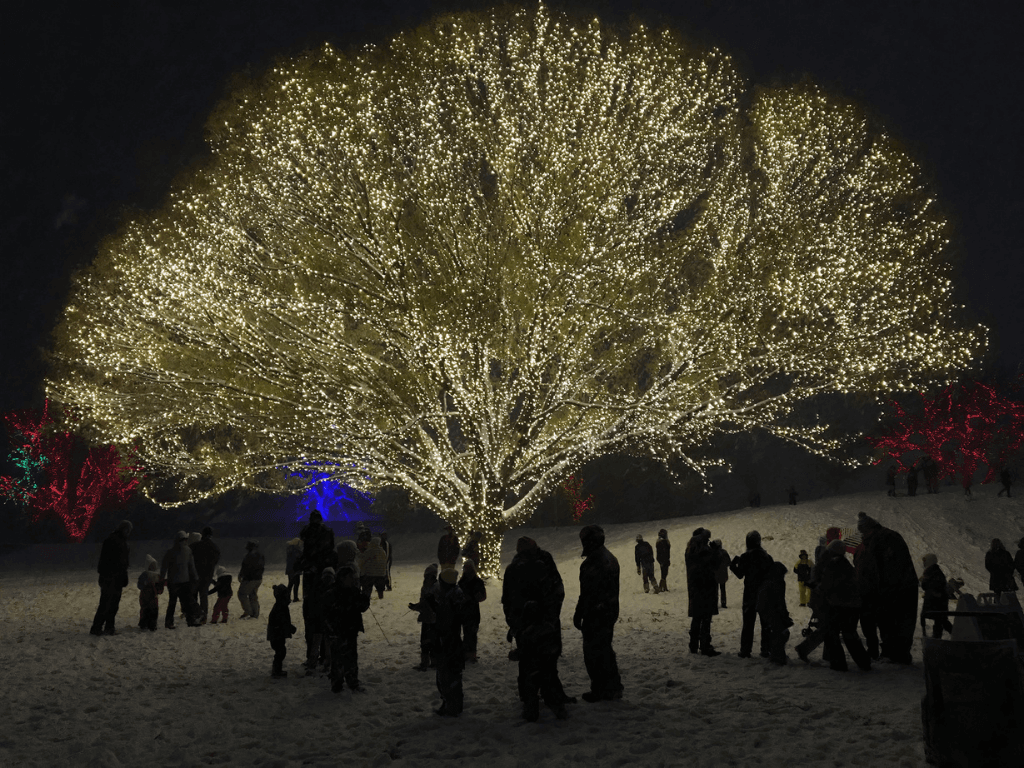 Tree of Light 1024x768px