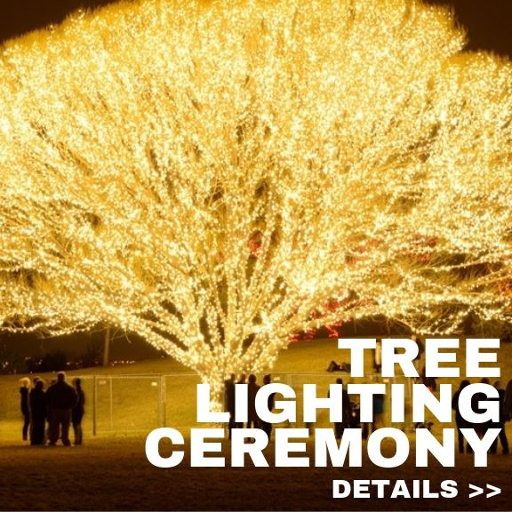 Copy of Copy of Tree Lighting Ceremony 2019